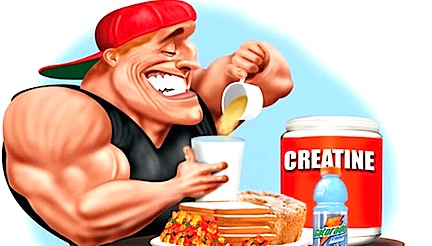Creatine – helpful or dangerous?