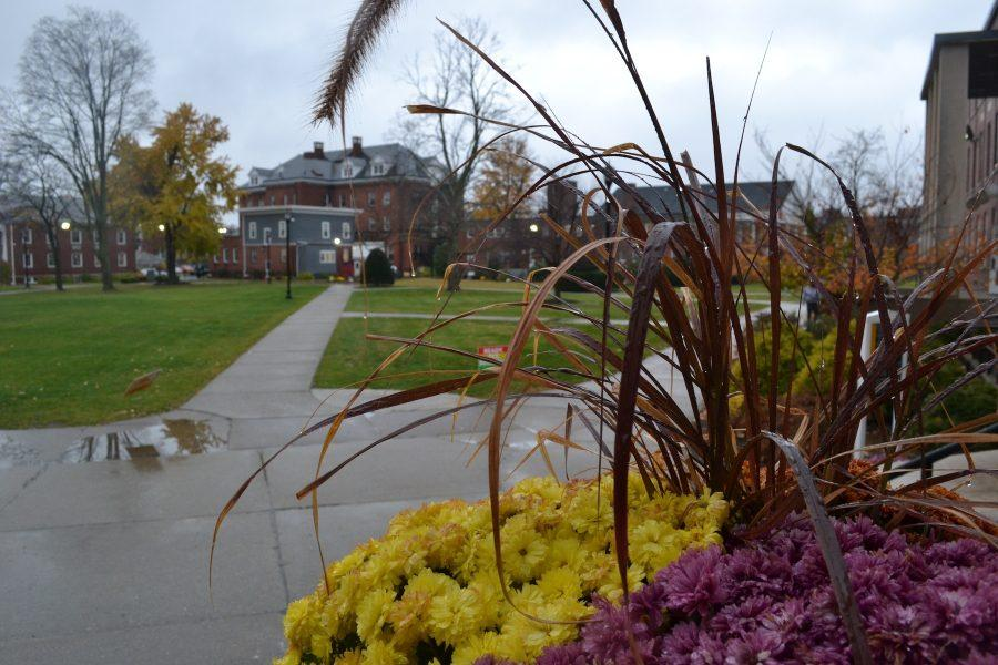 As the rain pushes fall into winter, AIC's beauty never fails. (Photo by Ryan LaFrance)
