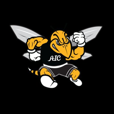 AIC fall sports wrap up