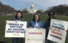 AIC students take on D.C. at 'March for Our Lives'