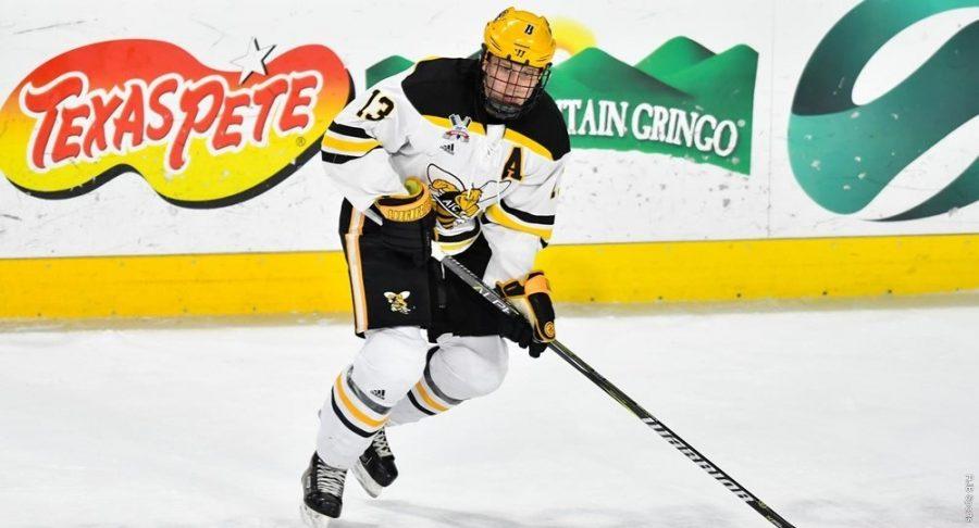 AIC Hockey – the right kind of energy