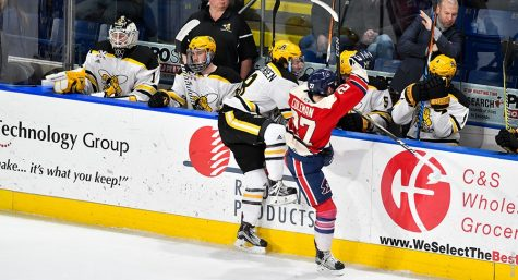 AIC Hockey – the right kind of energy