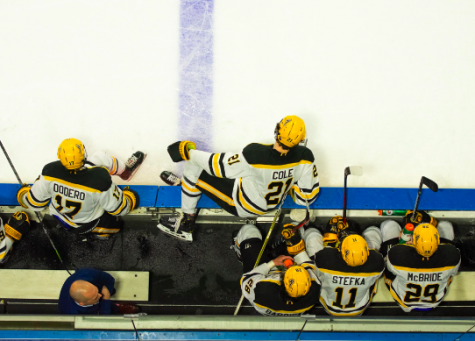 AIC hockey shines: a season analysis