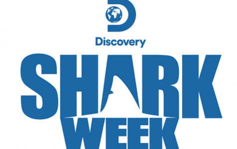 AIC student featured on Discovery Channel's Shark Week