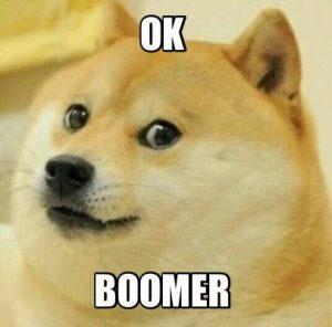 """Ok Boomer"": ageist attack or a Millennial's defense?"