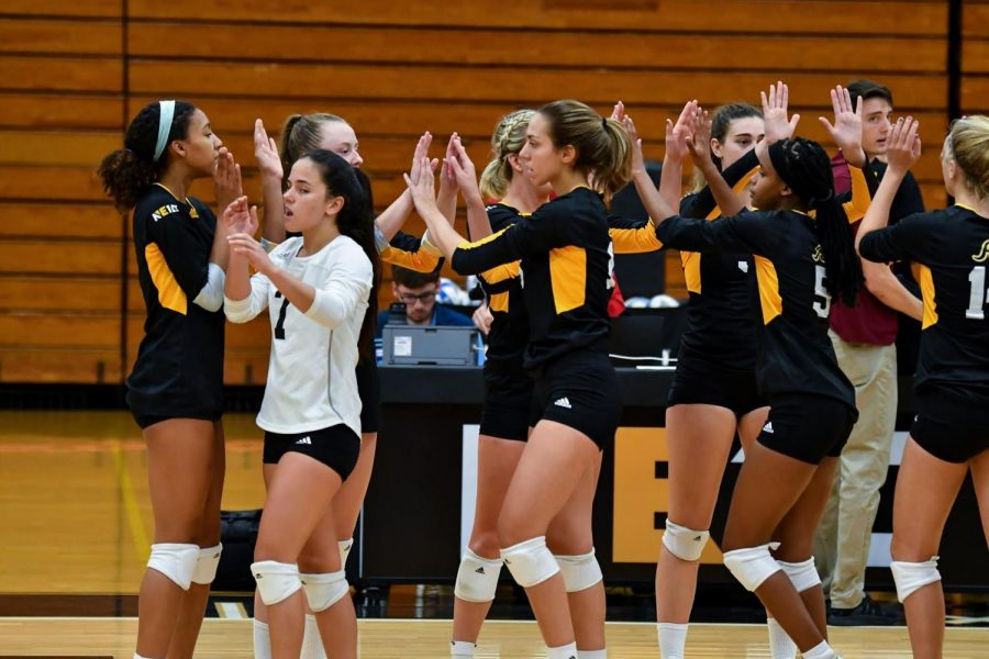 AIC volleyball wins semi-final, but falls short in the final