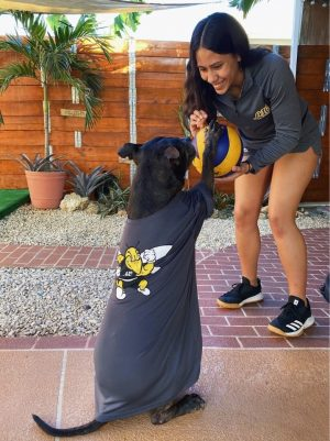 Members of the AIC Volleyball Team pose with their pups to keep spirits high